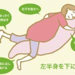 妊婦さんの安眠には「王様の抱き枕」でシムスの姿勢をキープ!